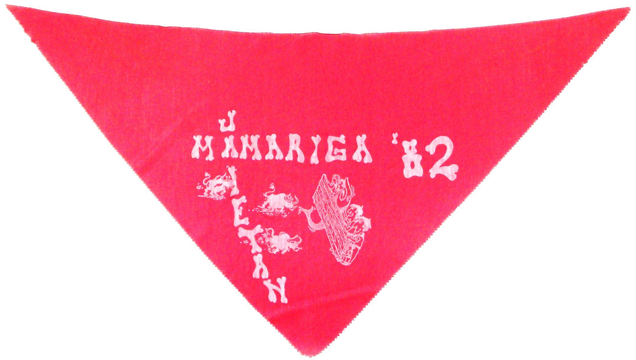 Pañuelo 1982