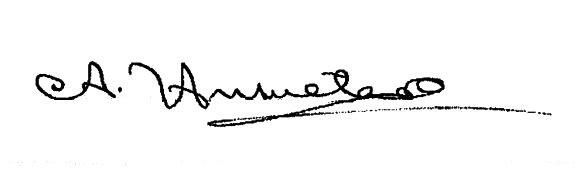 Firma Alcalde - Anacleto Unzueta