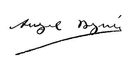 Firma Alcalde - Ángel Begué
