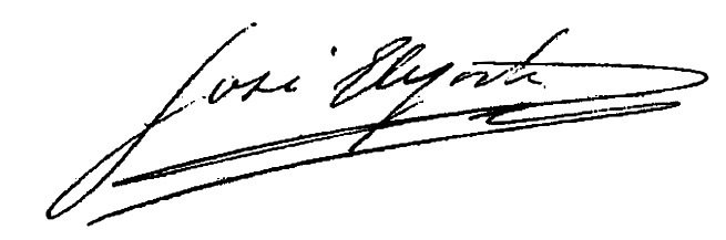 Firma Alcalde - José Elejoste