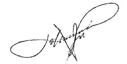 Firma Alcalde - José Hernández