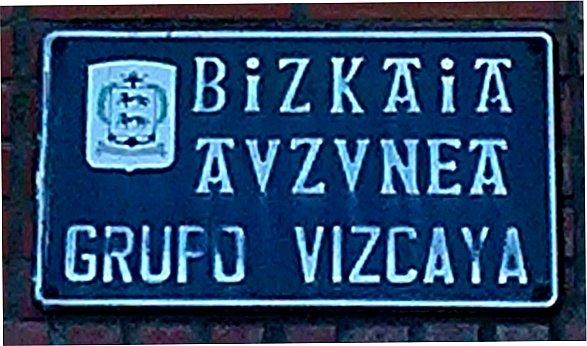 Grupo Bizkaia(3)