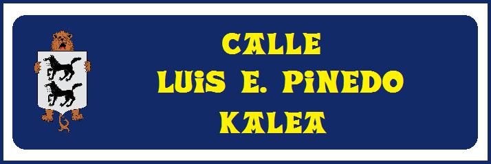12 Propuesta - Luis Pinedo
